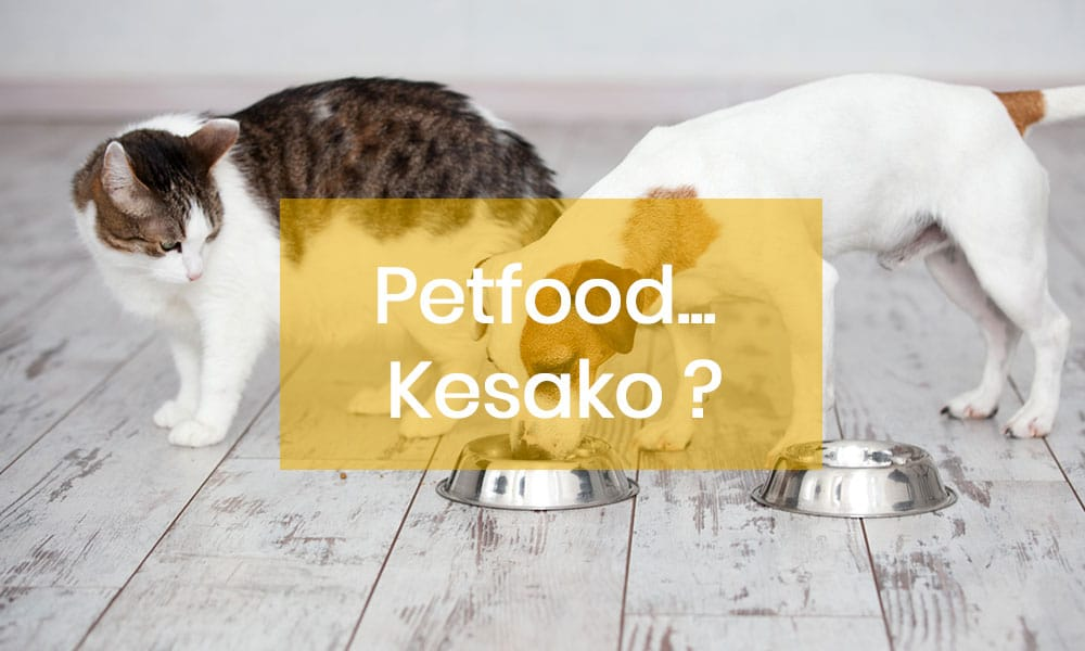 Le petfood... Késako ?