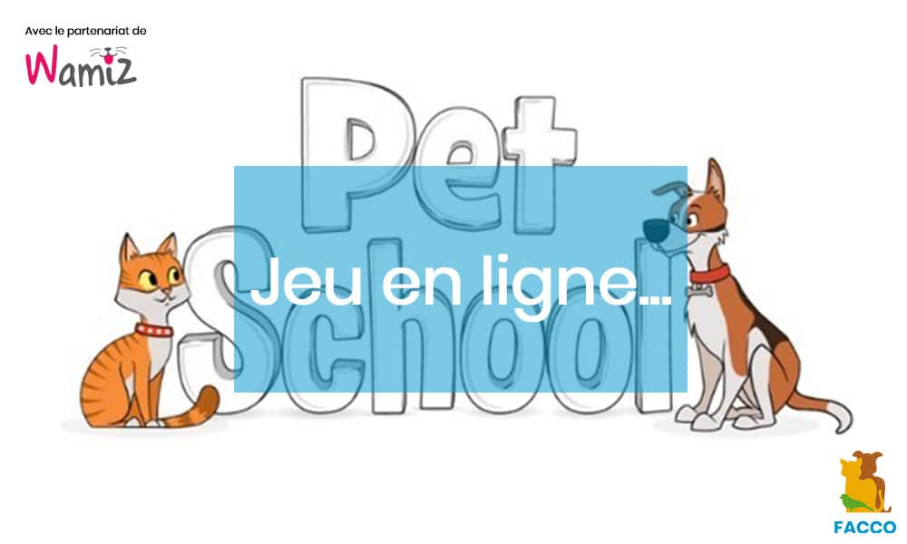 Le jeu Petschool by Purina