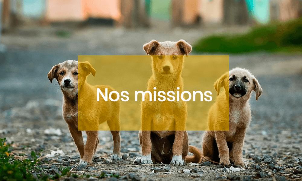 Fédération. Quelles sont les missions de la FACCO ?