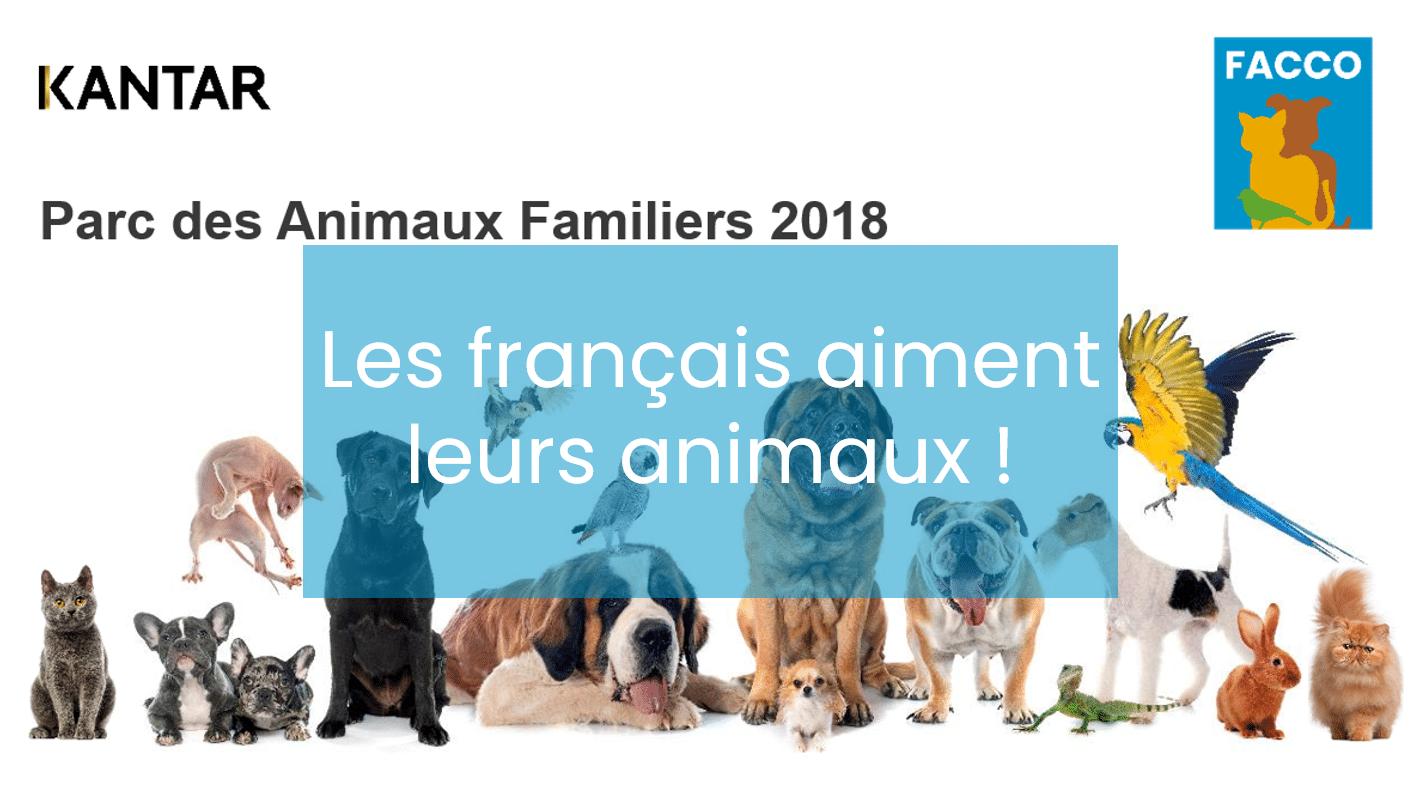 Top 10 Des Raisons Qui Poussent Les Francais A Adopter Un Animal Facco