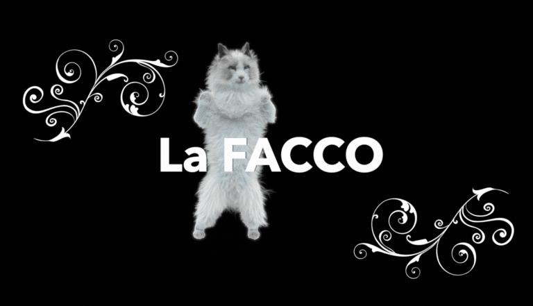 La FACCO vous souhaite une bonne année 2020