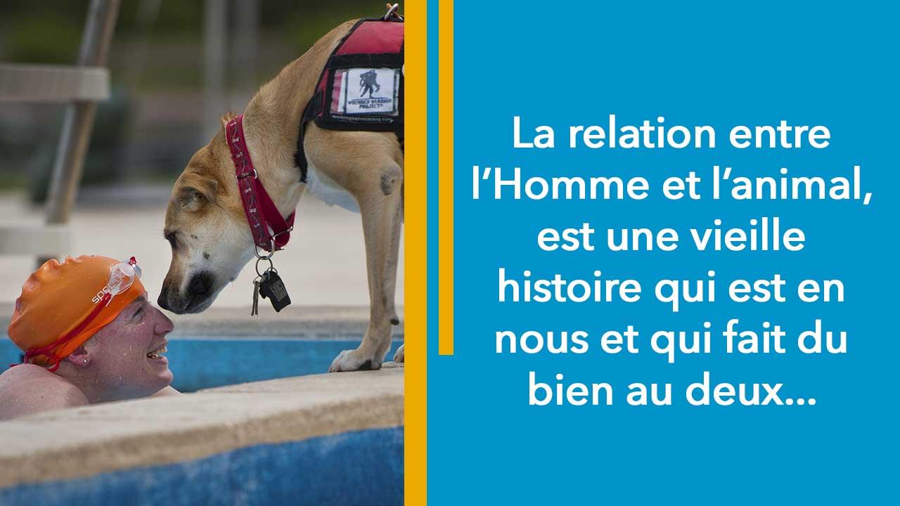 Les bienfaits de posséder un animal de compagnie par Valérie Dramard