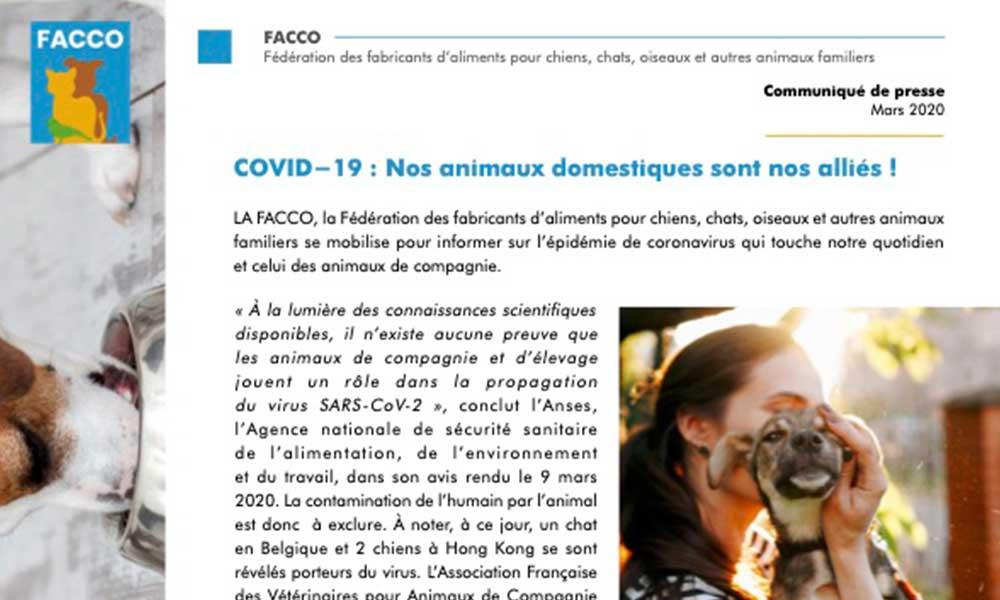 COVID-19 : Nos animaux domestiques sont nos alliés !