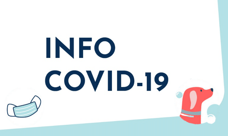 info-covid-19-confinement-animal